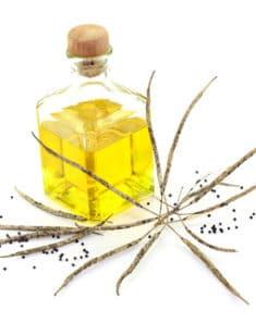 Obrazek olej rzepakowy